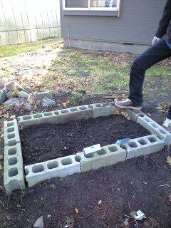 趣味の園芸
